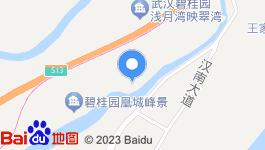 湖北武汉汉南区五星级酒店转让