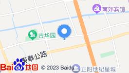 奉贤,柘林镇政府边,96亩,商住土地,整体转让