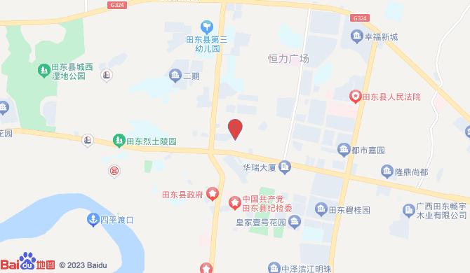 田东县好阿姨家政服务有限公司