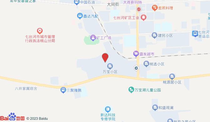 七台河市桃山区宝哥开锁店
