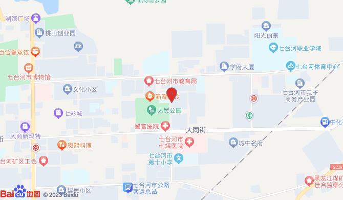 七台河市桃山区锁艺人锁具店