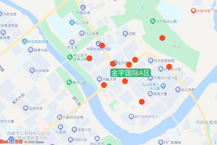 金宇国际A区