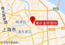上海新世界教育浦东金桥国际