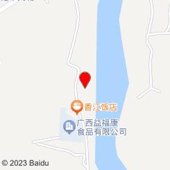 隆安县城东综合批发市场(广西金耀房地产开发有限公司)