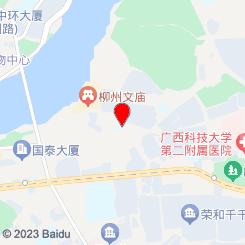 佳味螺螺蛳粉广西柳州正宗螺丝粉