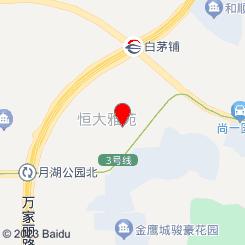 功夫雪狼(恒大雅苑校区)