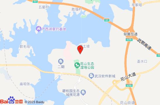 武汉花山热气球体验地图