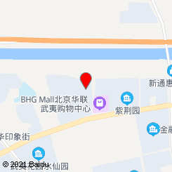 [武夷花园店]武氏养元堂