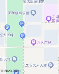 沈阳慧丰知识产权代理有限公司