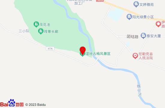 尼勒克湿地古杨林地图