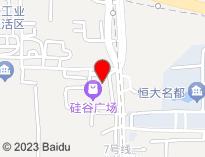 河南睿派电子有限公司