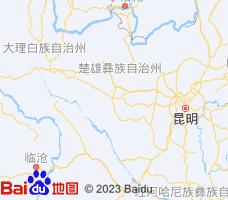 楚雄电子地图