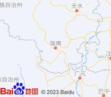 陇南电子地图