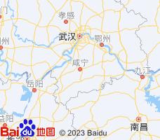 咸宁电子地图