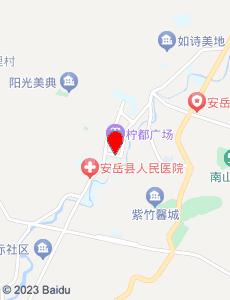 安岳旅游地图