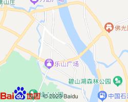 市中电子地图