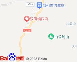 盘县电子地图