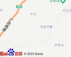 资阳雁江区电子地图
