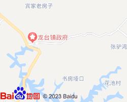 中江电子地图