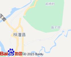 梓潼电子地图