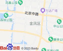 金凤电子地图