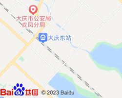 龙凤电子地图