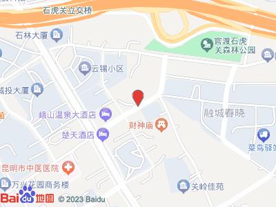 昆明市云南省昆明九五纹身位置