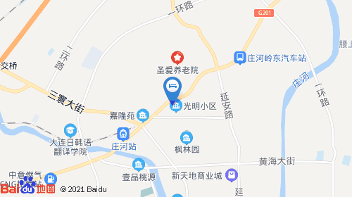庄河要建飞机场规划图
