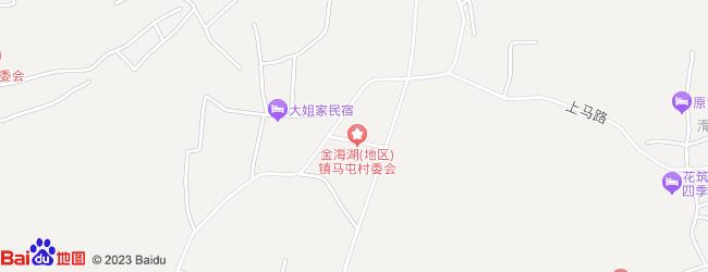 毕节市金海湖新区梨树镇地图
