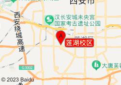 西安朴新教育莲湖校区
