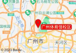 广州篮球培训机构广州体育馆校区