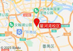 广州树华美术培训中心星河湾校区