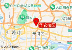 广州篮球培训机构华农校区