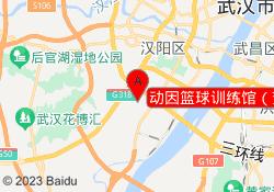 武汉动因教育动因篮球训练馆(芳草路店)