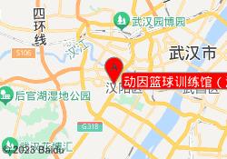 武汉动因教育动因篮球训练馆(汉阳大桥局店)
