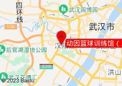 武汉动因教育动因篮球训练馆(王家湾店)