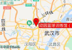 武汉动因教育动因篮球训练馆(金雅大厦店)