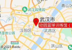 武汉动因教育动因篮球训练馆(崇仁路店)