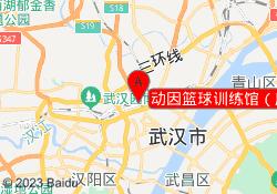 武汉动因教育动因篮球训练馆(唐家墩店)