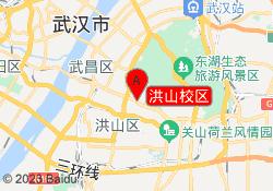 武汉奇天动漫插画洪山校区