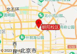 北京野生国际艺术教育朝阳校区