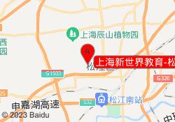 上海新世界教育-松江开元