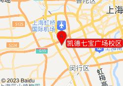 新精武少儿武术凯德七宝广场校区