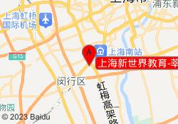 上海新世界教育-莘庄龙之梦