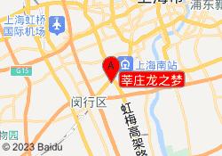 上海新世界教育莘庄龙之梦
