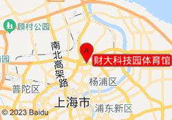 上海匠弈体育财大科技园体育馆