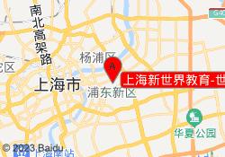 上海新世界教育-世纪大道