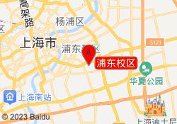 上海东方小熊浦东校区