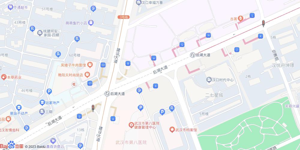 武汉后湖大道地铁站