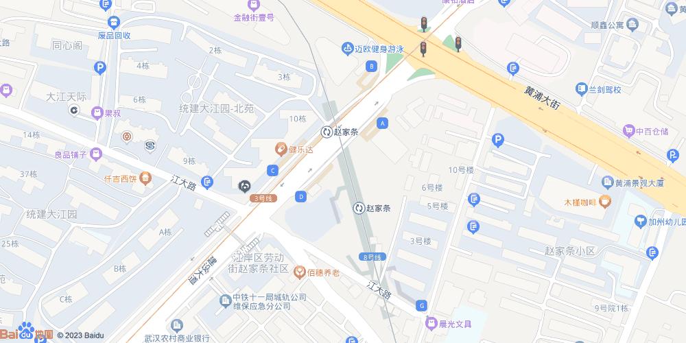 武汉赵家条地铁站